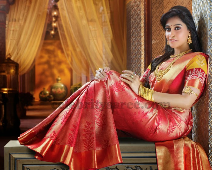 Regina Red Bridal Silk Saree