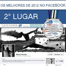 Prêmio Facebook - Medalha de Prata