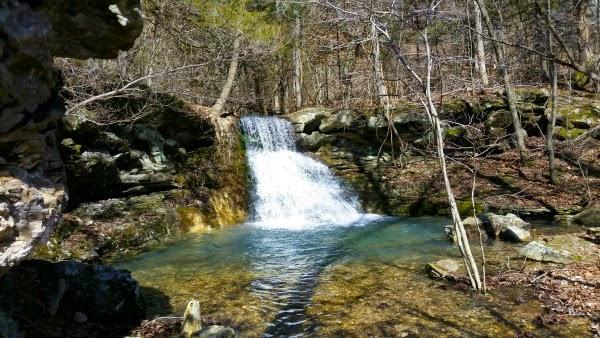 Reynolds Hollow along the Tea Kettle Falls Trail in Huntsville, AR