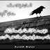 insan Apnay Ousaaf sy Hi Azeem tasavur kia jata ha - Mahawaray in urdu pics