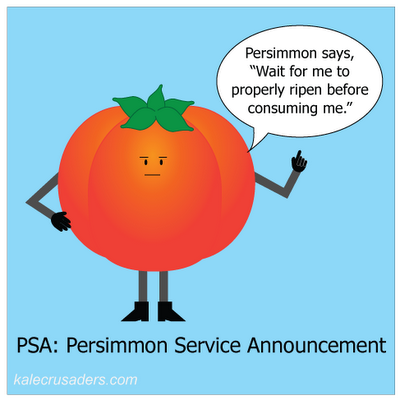 "PSA: Persimmon Service Announcement; Persimmon says, ""Wait for me to properly ripen before consuming me."""