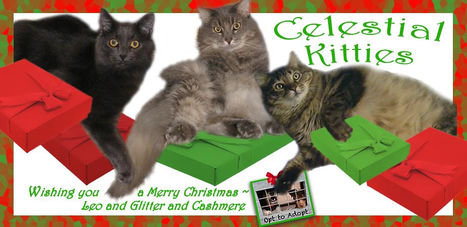 Celestial Kitties