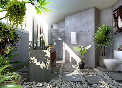 lưu ý cây cảnh trong nhà