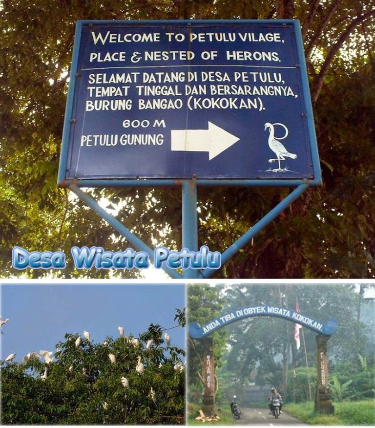 alamat wisata ubud bali, berita objek wisata monkey forest ubud bali, biaya wisata ke ubud bali, daerah wisata sekitar ubud bali, daftar tempat wisata di ubud bali, daftar wisata di ubud bali, destinasi wisata di ubud bali, foto wisata ubud bali, gambar wisata ubud bali, info wisata ubud bali, kawasan wisata di ubud bali, kawasan wisata ubud bali, lokasi wisata di ubud bali, lokasi wisata ubud bali, lokasi wisata ubud di bali, nama tempat wisata di ubud bali, objek wisata daerah ubud bali, objek wisata di daerah ubud bali, objek wisata di Ubud bali, objek wisata ubud bali, objek wisata ubud dalam bahasa inggris, objek wisata ubud dan sekitarnya, objek wisata ubud di bali, objek wisata ubud gianyar, objek wisata yang ada di ubud bali, obyek wisata sekitar ubud bali, paket wisata di ubud bali, paket wisata ke ubud bali, peta wisata ubud bali, tempat rekreasi di ubud bali, tempat rekreasi ubud bali, tempat tempat wisata di ubud bali, tempat wisata alam di ubud bali, tempat wisata bagus di ubud bali, tempat wisata bali pulina ubud, tempat wisata daerah ubud bali, tempat wisata dekat Ubud bali, tempat wisata di daerah Ubud bali, tempat wisata di sekitar ubud bali, tempat wisata di ubud bali, tempat wisata di ubud gianyar, tempat wisata di ubud gianyar bali, tempat wisata di ubud yang murah, tempat wisata di ubud yang wajib dikunjungi, tempat wisata favorit di ubud bali, tempat wisata kuliner di ubud bali, tempat wisata menarik di ubud bali, tempat wisata sekitar ubud bali, tempat wisata terkenal di ubud bali, tempat wisata Ubud bali, tempat wisata ubud di bali, tempat wisata yang ada di ubud bali, tempat wisata yang menarik di ubud bali, tujuan wisata di ubud bali, tujuan wisata ubud bali, ubud, Ubud Bali, wisata alam di ubud bali, wisata alam di ubud bali wisata alam ubud bali, wisata alam ubud bali, wisata alam ubud bali wisata alam di ubud bali, wisata apa saja di ubud bali, wisata daerah ubud bali, wisata di sekitar ubud bali, wisata di ubud bali, wisata gajah di ubu