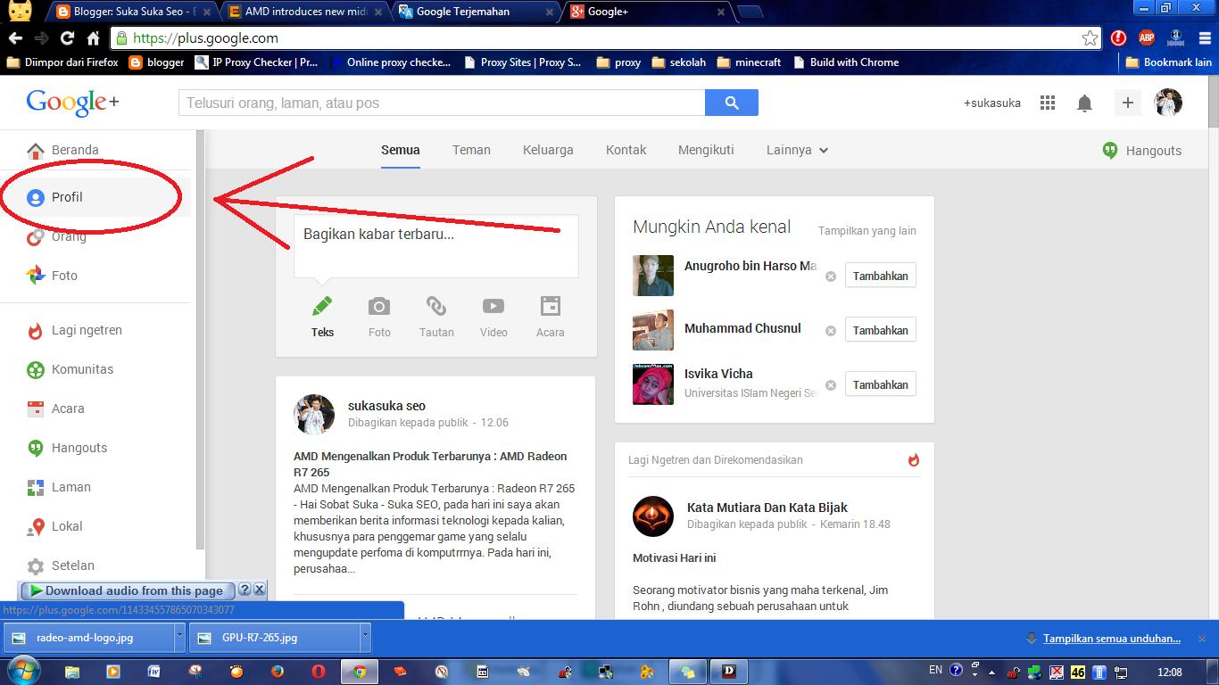 Mengatasi Follower List is Private atau Daftar Pengikut Bersifat Pribadi di Widget Google Plus