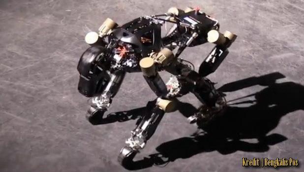 Robot Wujud Gorila