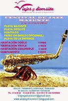 Tour al Festival de Jazz de Mazunte