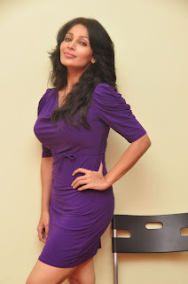 asha saini  Picture stills at sahasra sucess meet(33).jpg