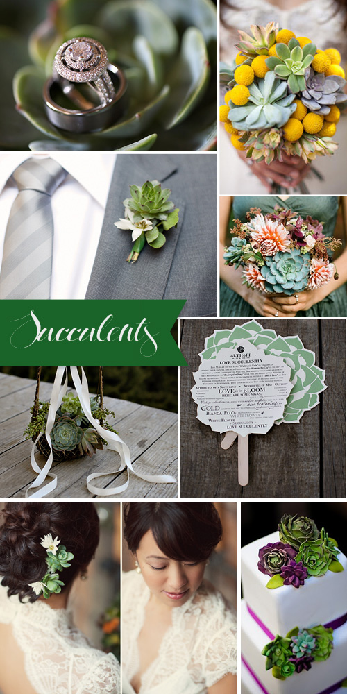 You can easily use succulents for wedding decor for seating charts