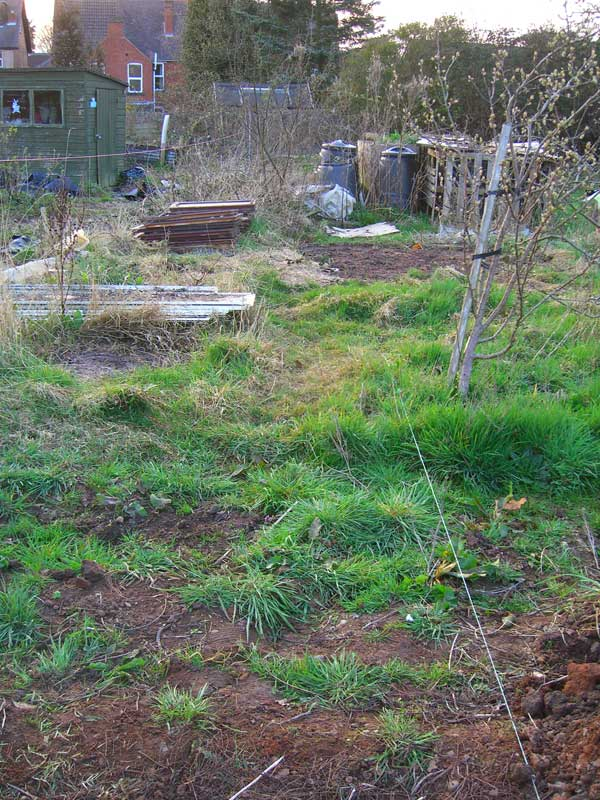 how to clear an allotment of weeds