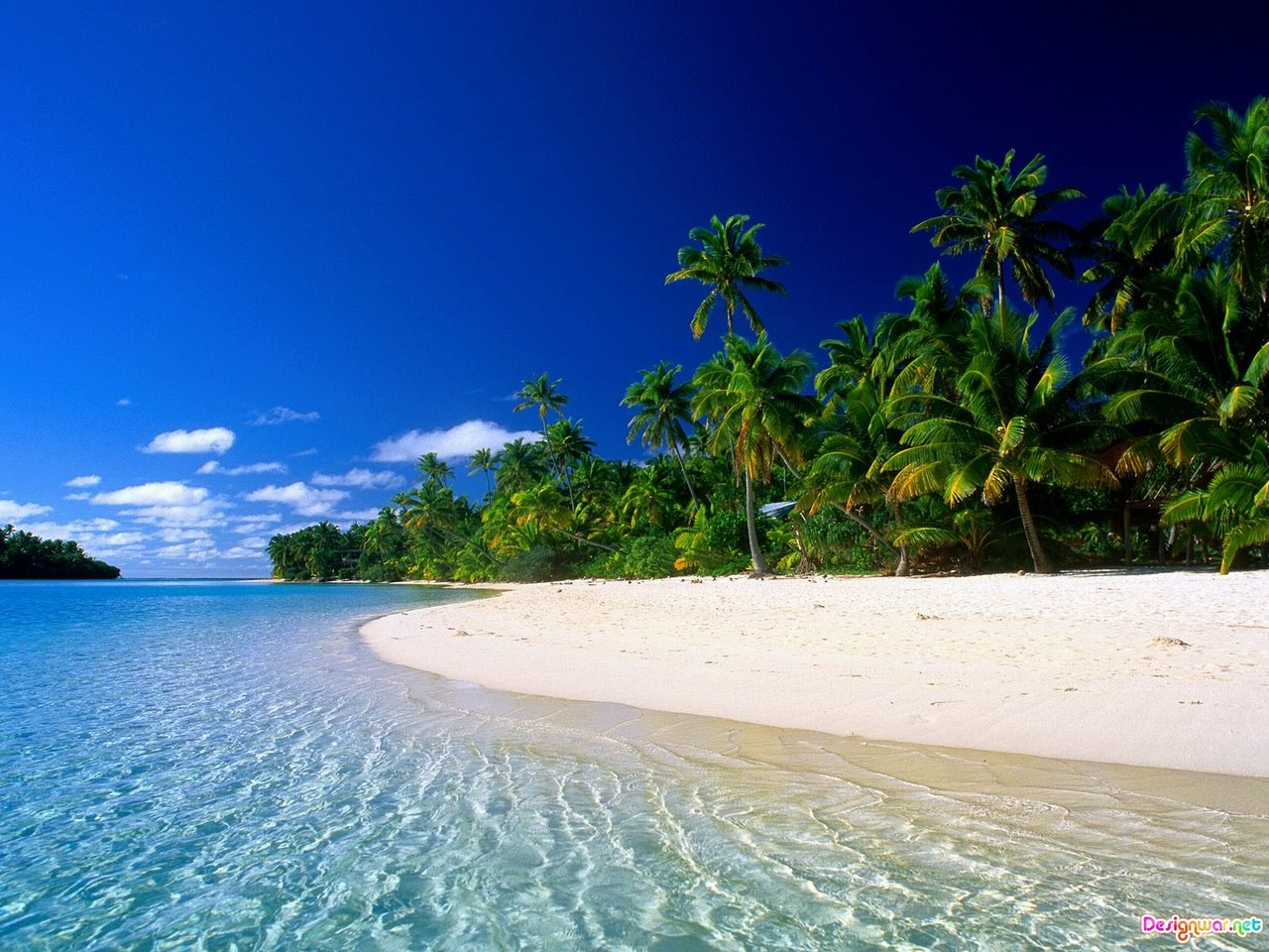 A tropical beach and a