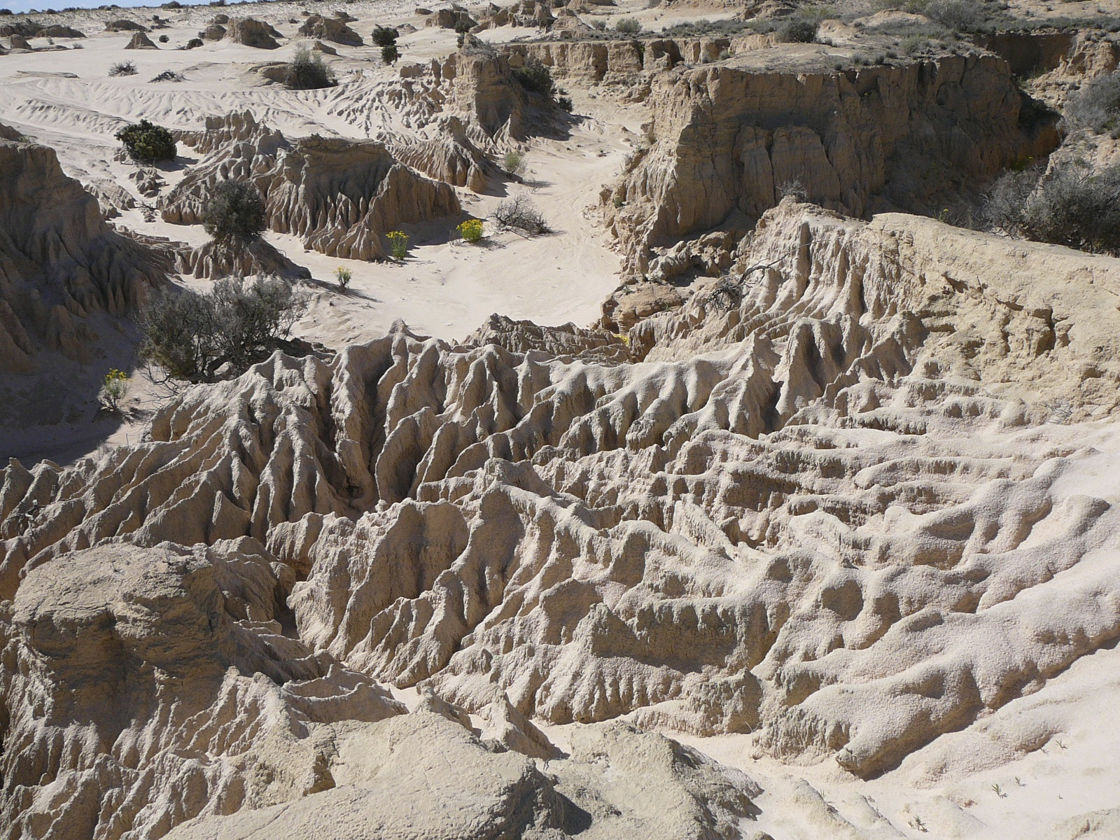ancient history lake mungo Australia's deep history was uncovered at lake mungo author provided  the 40,000-year-old mungo lady and the equally ancient remains of mungo man, found nearby in 1974, doubled scientific .