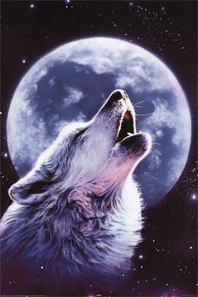 Colorare la vita by ivana v poletti fiaba di halloween for Disegni di lupi da colorare