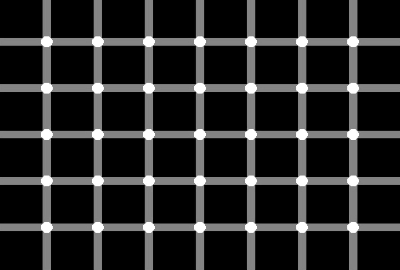 op1.png (1500×1013)