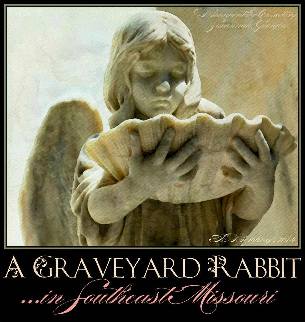 A Graveyard Rabbit in Southeast Missouri
