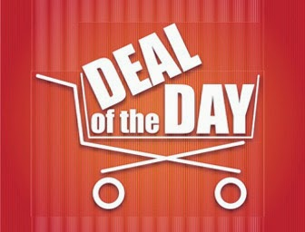 Top Discounted Deals from Flipkart : only For Today
