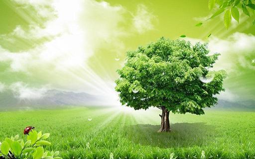 一個修行人,若只為了自己的成就而修,就不是菩薩行。一個人的成就,是為了大眾而成就,這才是真修行。~禪宗第八十五代宗師 悟覺妙天禪師