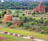 Dry Central Myanmar