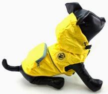 Rainy Day Poncho