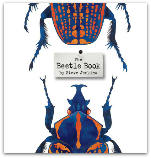 Best Illustrated Book Covers : New york times best illustrated children s books of