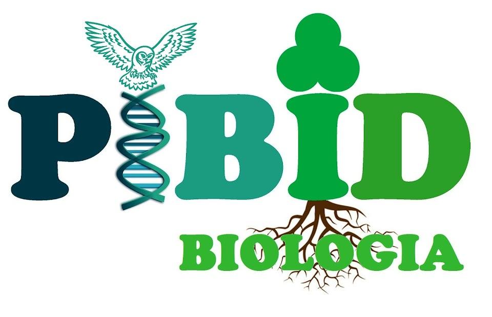 PIBID BIOLOGIA - UNIPAMPA