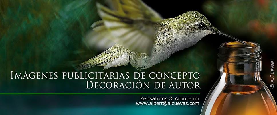 Galería de Albert Cuevas