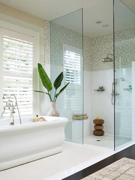 Walk In Shower Ideas Home Appliance