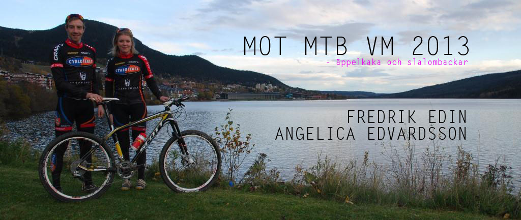 MTBVM2013