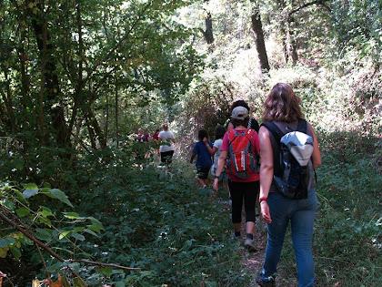 El sender després de creuar el Torrent de l'Avellanosa