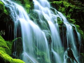 cascade-+le+vert+de+la+nature.jpg