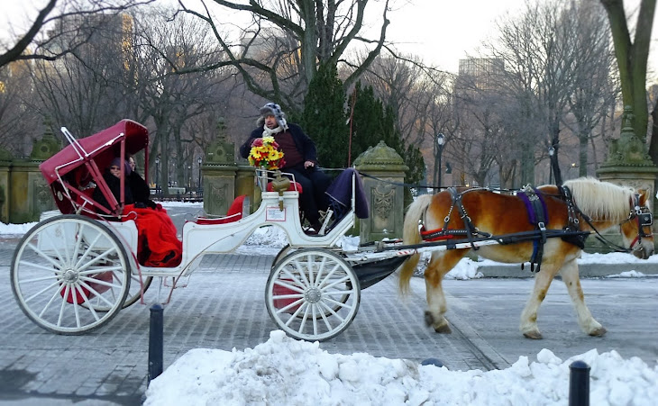 New York Horse and Buggy