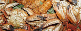 Otoño Gastronómico de Galicia