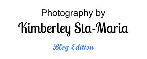 Photography by Kimberley Sta-Maria