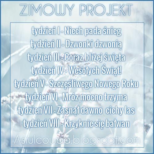 Zimowy Projekt