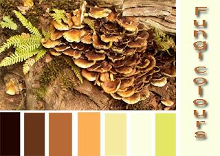 Colour Palette for October
