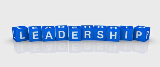 Leadership Promises - A Leader of Discernment