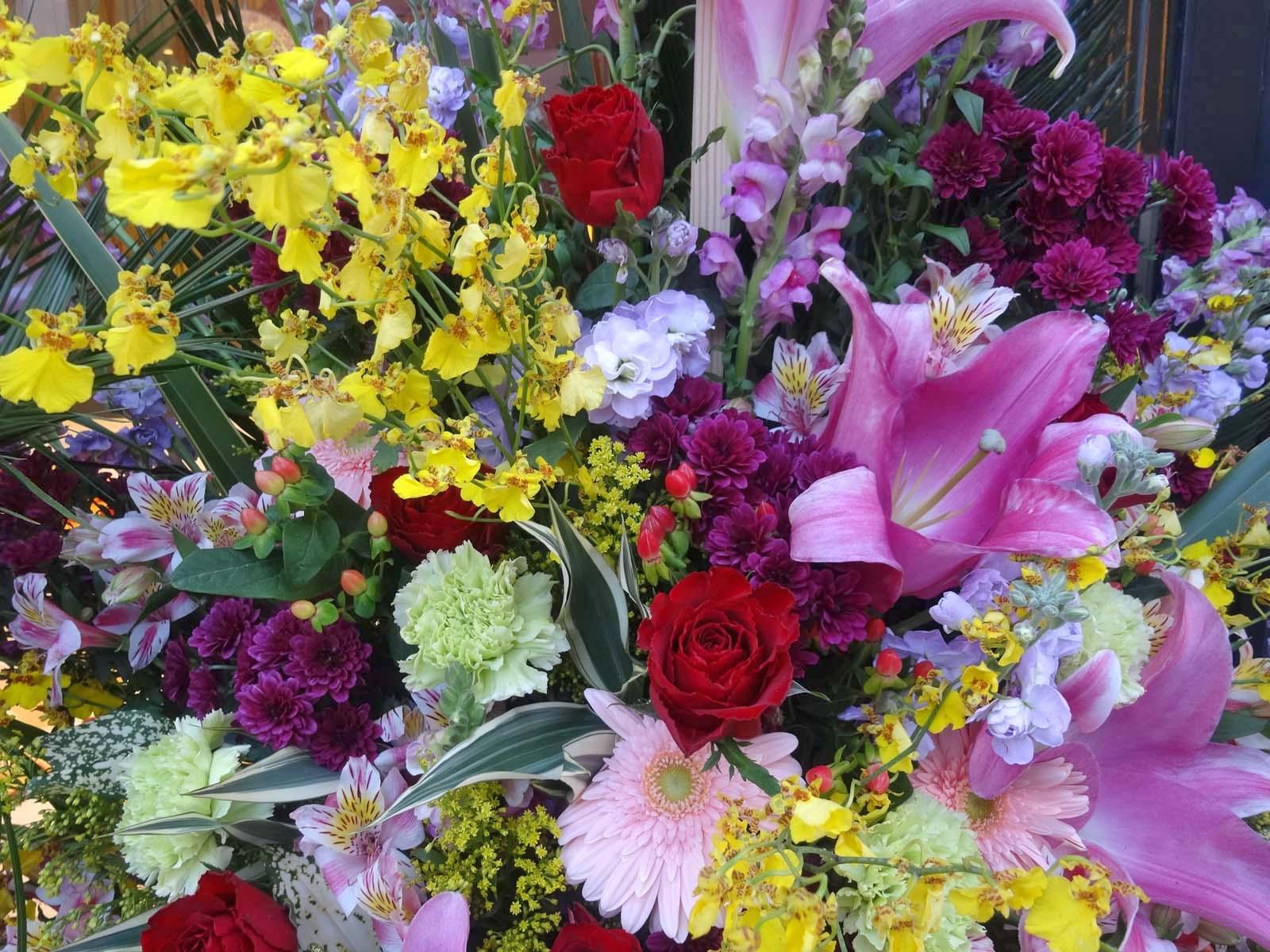 花,開店祝い,スタンド花,花輪〈著作権フリー画像〉Free Stock Photos