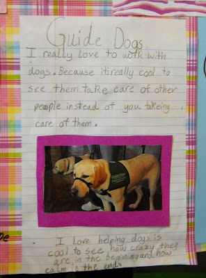 Close up of guide dogs project with an image of a puppy and surrounding text.