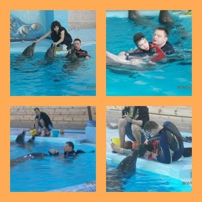 Terapie cu delfini in Truskavets, Ucraina