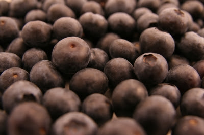Beri biru atau blueberries