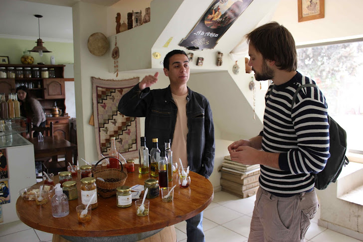 Andreas smaker på olivenoljer