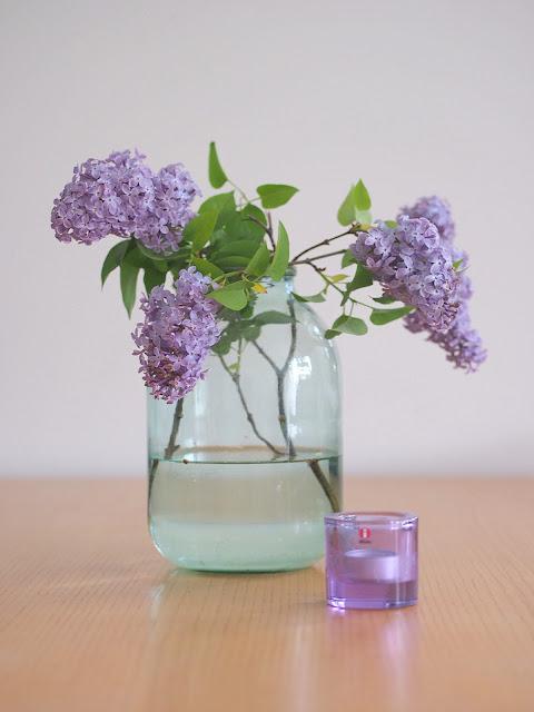 syreenin oksa lila lilac sireenin kivituikku iittala