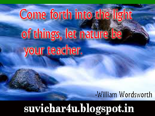 Come forth into the light of things, let nature be your teacher.