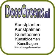 Online Kunst Planten Bomen Palmen Super Prijzen