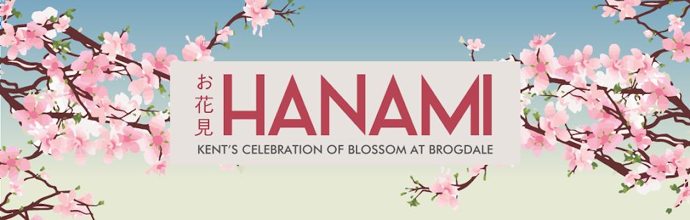 Hanami England