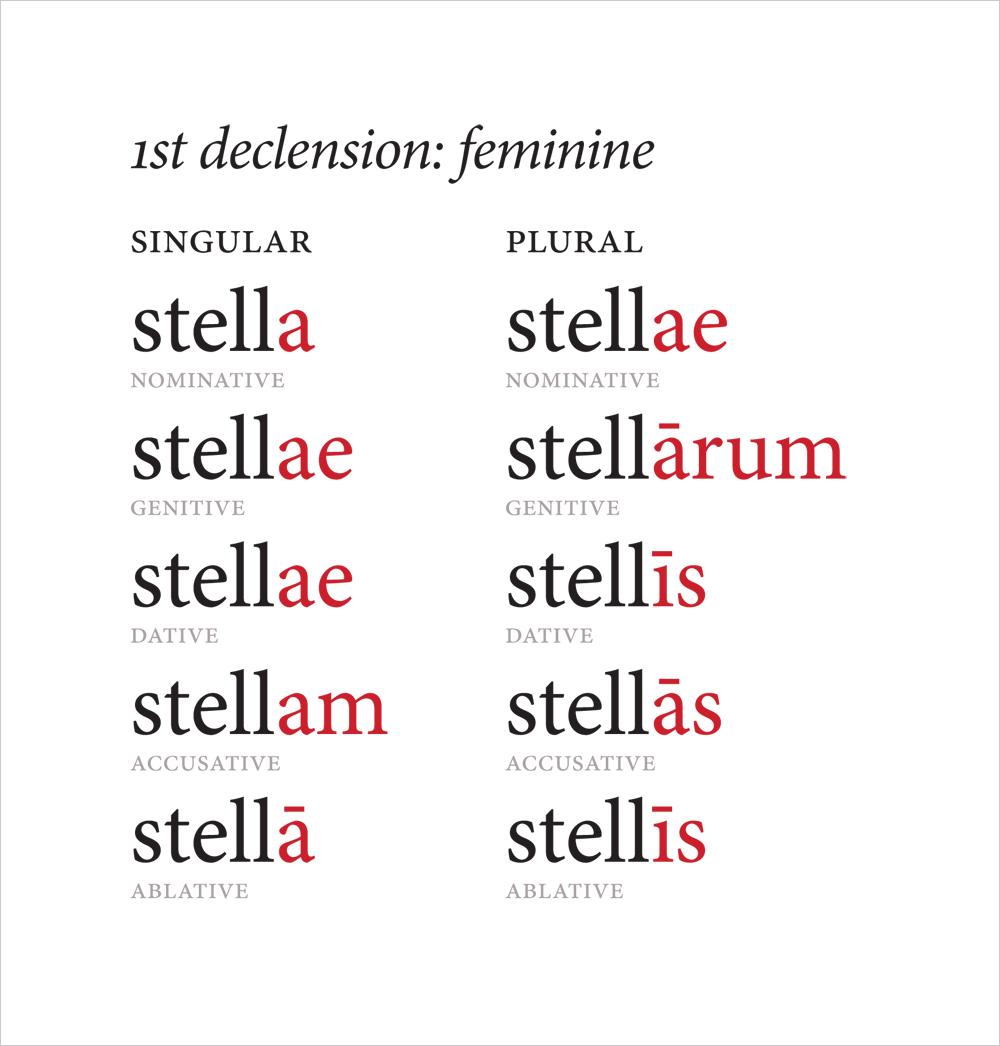 latin words:
