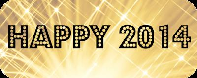 Goodbye 2013. Hello 2014!!