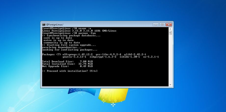 Foreign Linux in Microsoft Windows