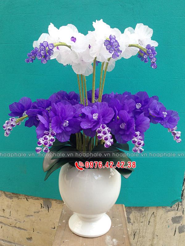 Hoa lan hồ điệp tím trắng hai tầng, hoa pha lê