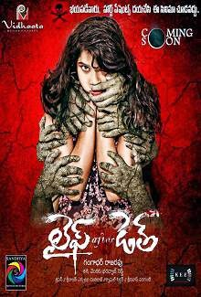 Life After Death (2014) Telugu Movie Poster